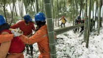 Ultra-light utility poles bring electricity back to snow-covered Anhui city within one day