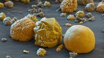 Katodové materiály pod mikroskopem