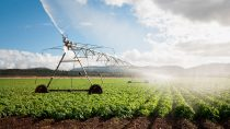 Irrigation of agricultural land