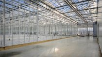The global breeding center for cucumbers incorporates the latest technology and is at the forefront of modern environmental standards.