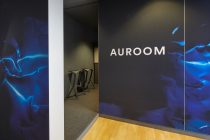 At Auroom™, BASF's designers to allow their customers to experience new colors and effects using a virtual platform.