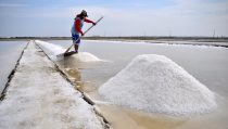 BASF plastic additives help to boost salt production in Indonesia