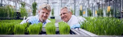 Worldwide, BASF researchers work on new agricultural solutions that enable balance between agricultural productivity, environmental protection and society's needs.