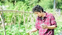 Farmers in Asia will soon be able to leverage digital technology to boost crop yields.