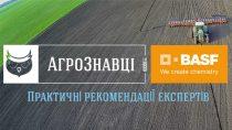BASF підсилює підтримку українських аграріїв у вирішенні нагальних виробничих питань