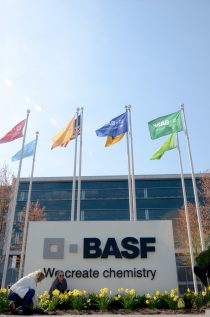 Employees at BASF's North American headquarters plant perennials to attract a variety of pollinator insects in celebration of Earth Day 2016